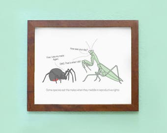 Black Widow and Praying Mantis: Planned Parenthood Fundraising Print - 8 x 10 Art Print