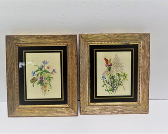 Pair of framed botanical prints vintage 5 x 6 framed prints