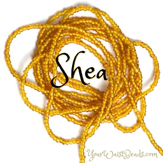 Shea ~ Waist Beads ~ YourWaistBeads.com