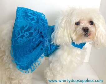 Turquoise Dog Dress, XS and Small, Beautiful Lace over Satin, couture dress for dogs, Designer Fashion dog clothes