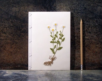 Chamomile. Botanical Notebook. Daisy. Embroidered Journal. Chamomile Notebook. Floral Journal. Daisy Journal. Spring Notebook. Gardener Gift
