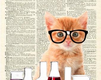 8x10 Science Kitty Printable
