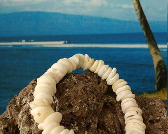 Genuine puka shell bracelet or necklace from Maui