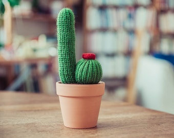 Knitted Cacti in a Pot - Flowering Cactus, Knitted Cactus, Crochet Cactus, Amigurumi, cactus toy, plush cactus, stuffed cactus, cactus art