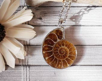 Large Ammonite Necklace Large Beach Fossil Jewelry Ammonite Fossil Pendant Ammonite Pendant Amonite Necklace Ammonite Jewelry Paleontology