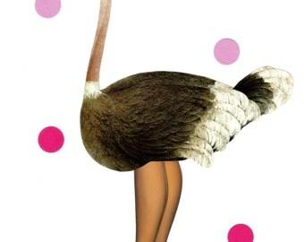 Funny Ostrich Art, Fun Bird Illustration, Original Decor, Cute Wall Idea, Modern Bird Artwork, Ostrich Decor, Ostrich Wall Art