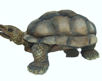 Tortoise Turtle sew your own ebook with 68 pages Instruction and pattern