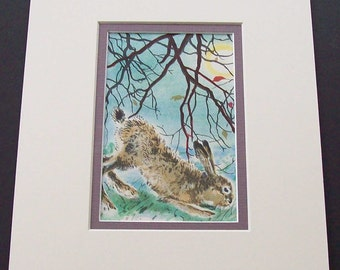 Antique mounted print of a Hare, but Rose Fyleman