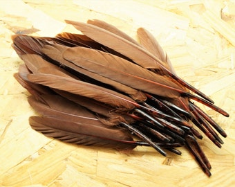 Set of 10 natural brown tinted goose feathers, 10-15 cm