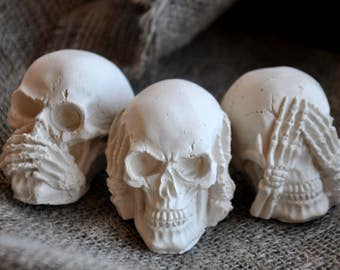 """Skull """"Cries and Whispers"""""""