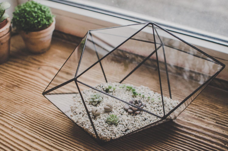 terrarium large strange shape staine glass terrarium succulent. Black Bedroom Furniture Sets. Home Design Ideas