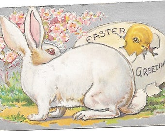 2 Easter Rabbits Series Postcards  1909