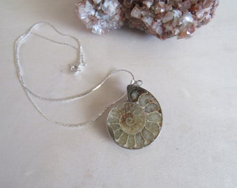 Ammonite Pendant. Ammonite Necklace. Shell Necklace. Gypsy necklace.