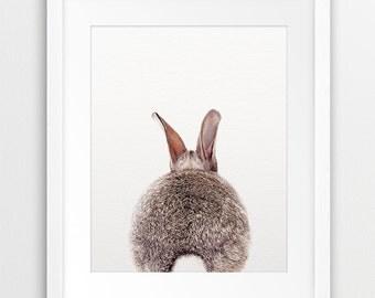 Rabbit Tail Print, Nursery Wall Art, Rabbit Photo, Bunny Rabbit, Nursery Decor, Modern Wall Art, Woodlands Animal, Kids Room Printable Art