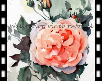 Watercolor tutorial 3 full frontal rose