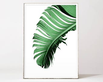 Banana leaf, banana leaf print, banana leaf art, banana leaf poster, banana leaves, palm leaf art, leaf prints, palm poster, palm print