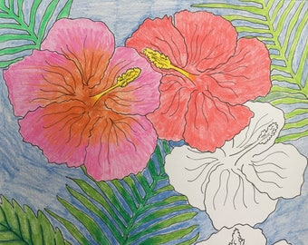 Hibiscus Adult Coloring Page