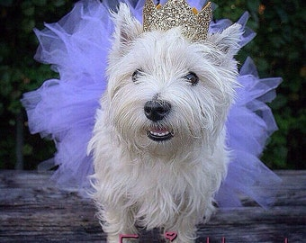 Tutu dress,  dog costume, Dog Skirt, Dog tutu, Pet Tutu, tutu costume, princess crown, tutu set,