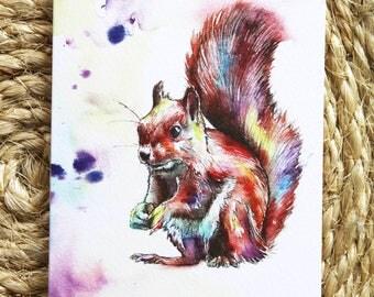 Watercolour Colourful Squirrel Print Greetings Card