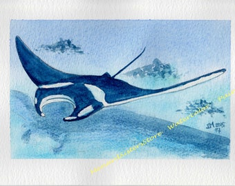 An Another Manta ray - Animal Watercolor Painting-Marine animal