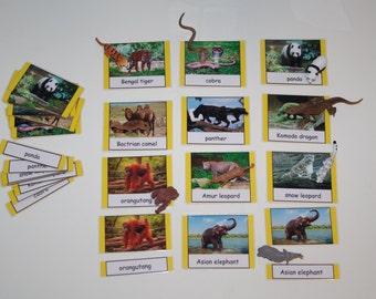 Asia--Animals of Asia Montessori 3-part cards