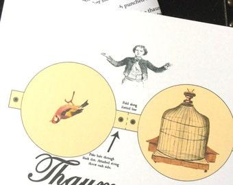 Victorian Thaumatrope kit