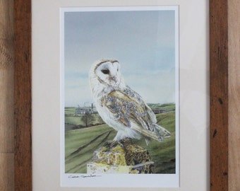 Barn Owl on Post Art Print