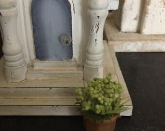 Miniature Flowers, Miniature Potted Plants, Miniature House Plants, Miniature Fairy Garden Plants, Miniature Dollhouse Plants, Dollhouse