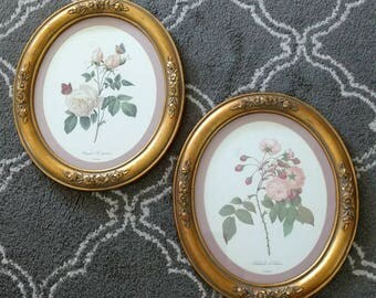 Vintage Oval Floral Prints in Gold Frames
