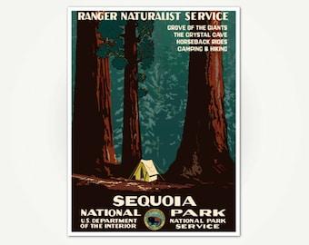 Sequoia National Park Vintage California Redwoods Travel Poster Print - National Park Poster Art