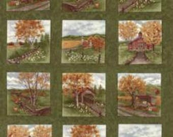 Country Road Panel - Northern Pine 6660 14 - Moda Fabrics - 100% Cotton Quilting Fabric