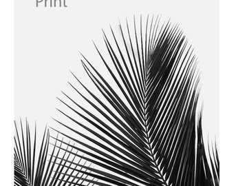 Download a black and white palm leaf, palm leaf, print, black and white, tropical, Scandinavian decoration