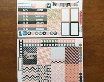 Planner Chic Mini Weekly Set ECLP Horz & Vert Planner Stickers Erin Condren Mambi Inkwell Press Filofax KikkiK Happy