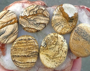Gorgeous Natural Picture Jasper Thumbstone