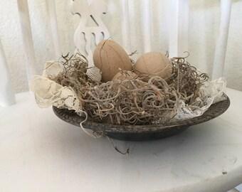 Springtime Birds Nest