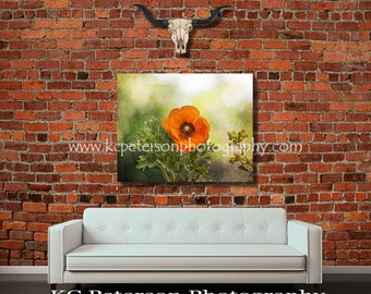 Orange Poppy Version 2 ..... FREE SHIPPING!