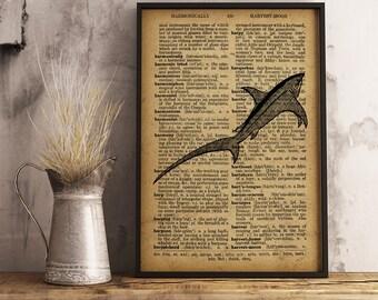 Fish wall art, Fish vintage style Illustration dictionary art print, Fish Wall Art, Nautical Wall Art, predatory fish print (R04)