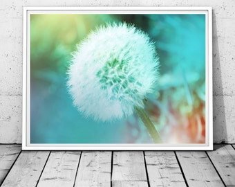 dandelion wall art dandelion print dandelion photography print bedroom decor botanical print nature photography floral blue digital download