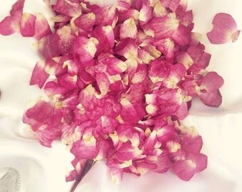 Red and Pink Rose Confetti - Miniature Rose Petals for Wedding Confetti, Craft or Card Making, Natural, Biodegradable, Real Petal Confetti