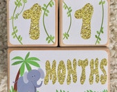 Baby Age Blocks - Baby Milestone Blocks - Jungle - Girl - Monthly Weekly Yearly Baby Blocks - First Day of School Blocks - Jungle Nursery