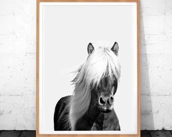 Horse Poster, Horse Photo, Horse Art, Horse Art Print, Animal Print, Horse Wall Art Decor, Horse Printable Art, Horse Print, Photography Art