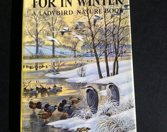 Vintage Ladybird Childrens book What to look for in Winter