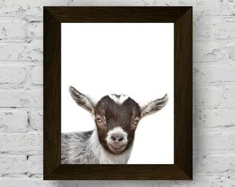 goat print, animal print nursery, farm animal photography poster, wall art prints, printable artwork, animal wall decor, digital download