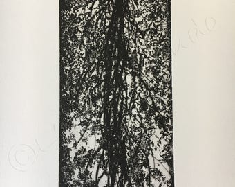 WATERFALL etching, ENGRAVING, aquatint and drypoint, INTAGLIO