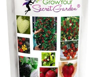 Rainbow Strawberry 30 Seeds, Mixed strawberry seeds- Different varieties in 1 packet
