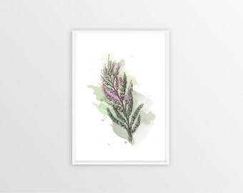 A4, Tamarisk, Wall art, Decoration, Home decor, Print, Mural Art, botanical, watercolor