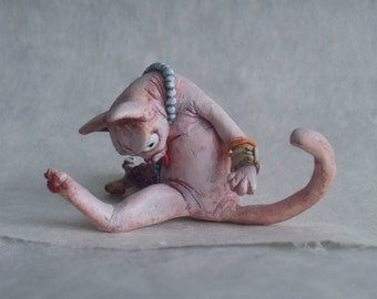 The Hairless Cleaner Cat