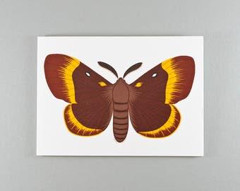 Notecard | Chestnut & Yellow | Oak Eggar Moth | Single card and envelope