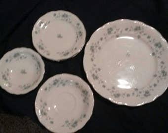Johann Haviland China Dishes