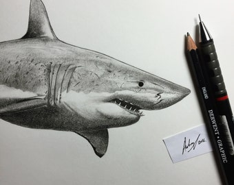 Endangered 4 'Great White', A4 Original Illustration